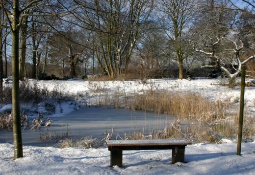 Park fotogalerie for Teich im winter